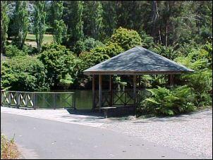 National Rhododendron Gardens, Olinda